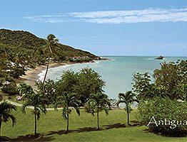 Hawks bill Antigua Postcard