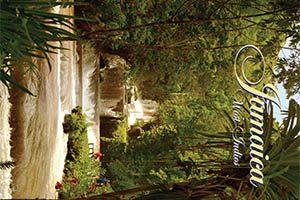 Waterfall Fridge Magnet 010n Jamaica by KIMAGIC
