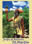 Rasta man and pineapple in Saint Martin fridge magnet 011