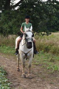 Conestogo River Horseback Adventure, on the trail