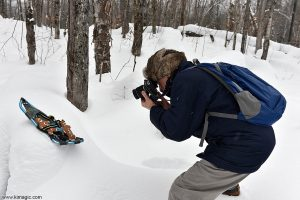 Gingerbread Man adventure-Arrowhead Provincial Park Ontario