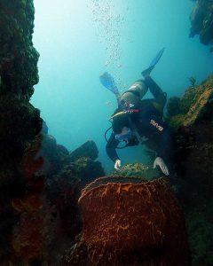 March 2004 Underwater photographer Igor Kravtchenko - Poster for Montserrat Tourism