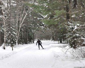 Nordic Skiing- Arrowhead Provincial Park Ontario